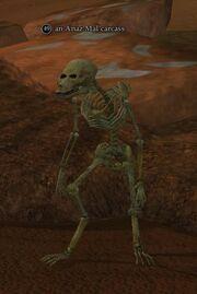 An Anaz Mal carcass (Sinking Sands)