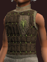 Naturalist's Sewn Tunic (Equipped)