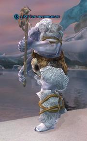 A Ry'Gorr necromancer