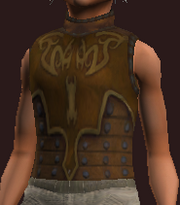 Stormcaller's Tunic of D'Lere (Equipped)