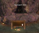 Gruengach book