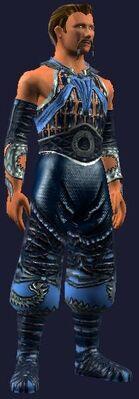 Blue dragon gi (Visible, Male)