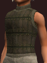 Imbued Tanned Leather Tunic (Equipped)