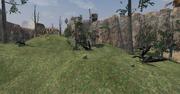 Dragonscale Hills