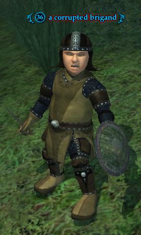 A corrupted brigand