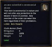 Arcane scientist's ceremonial shoes