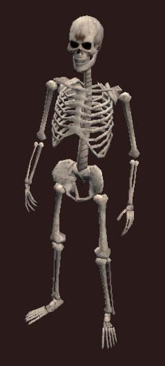 petamorph wand: cackling skeleton | everquest 2 wiki | fandom, Skeleton