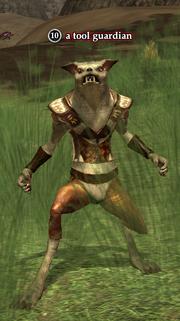 A tool guardian