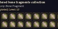 Shattered bone fragments collection