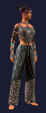 Sathirian Dragonslayer Leather Gi (Visible, Female)
