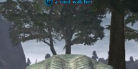 A void watcher