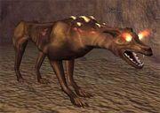 Race hellhound