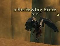 File:Strifewing brute.jpg