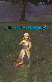 A shadowed halfling (Enchanted Lands)