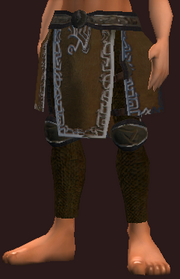 Frostwind Champion's Breeches (Equipped)
