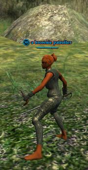 A brownie patroller