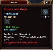 Sensei's Arm Wraps