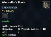 Windcaller's Boots
