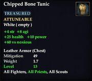 ChippedBoneTunic