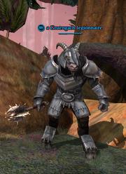 A Gruengach legionnaire