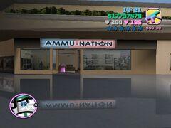 Ammunation npm.JPG