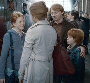 P7 Familia Weasley Granger.jpg