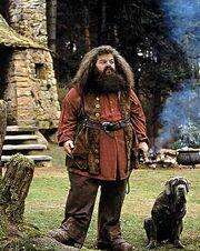 Hagrid l.jpg