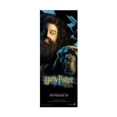 Póster de Hagrid y Fang