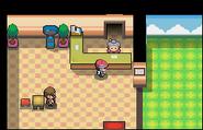 Guardería Pokémon Platino