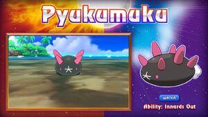 Pyukumuku (nuevo nombre)