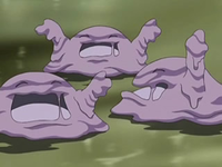Archivo:EP556 Muk felices.png
