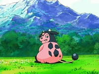 EP531 Miltank pastando.png