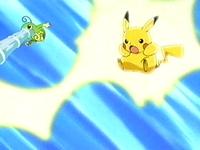 EP275 Politoed y Pikachu atacando.jpg