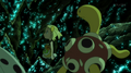 EP905 Shuckle.png