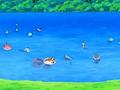EP558 Pokémon del lago (2).png