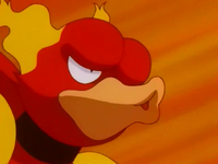 Archivo:EP239 Magmar.png