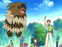 Archivo:EP398 Coordinadores Pokémon (3).png