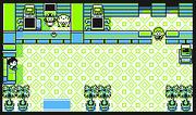 Centro Pokémon InteriorAm.png