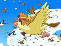 Archivo:EP482 Pikachu volando con Pidgeot.png