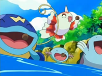 Archivo:EP497 Whiscash, Goldeen, Wooper y Quagsire.png