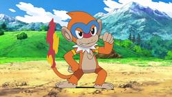 Archivo:EP601 Monferno de Ash (2).png