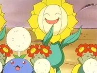 Archivo:EP251 Sunflora Bellossom y Jumpluff.jpg