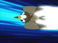 Archivo:EP472 Starly usando ataque rápido.png
