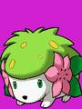 Entrada de combate contra Shaymin en Pokémon Ranger 2.png