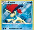 Keldeo (Fronteras Cruzadas 47 TCG)