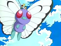 Archivo:EP419 Butterfree.png