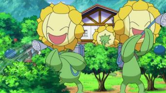 Archivo:EP606 Sunflora de Lulu.png