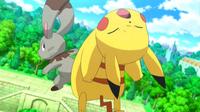 EP805 Pikachu VS Bunnelby