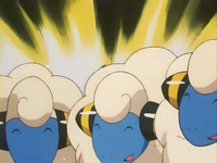Archivo:EP141 Mareep (3).png