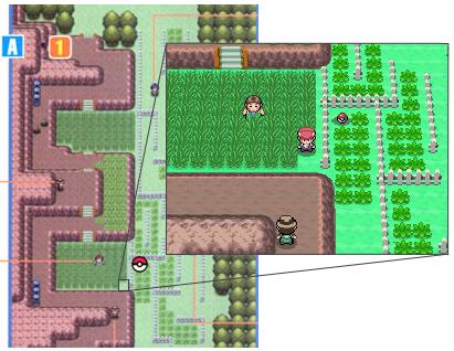 Archivo:Localización del colmillo agudo en Pokémon Platino.png